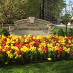 REVIEW: Washington Marriott Wardman Park Hotel
